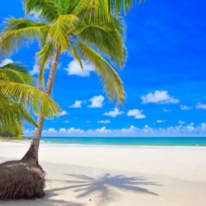 painel-adesivo-parede-paisagem-cachoeira-praia-mar-natureza-D_NQ_NP_12755-MLB20064843538_032014-F