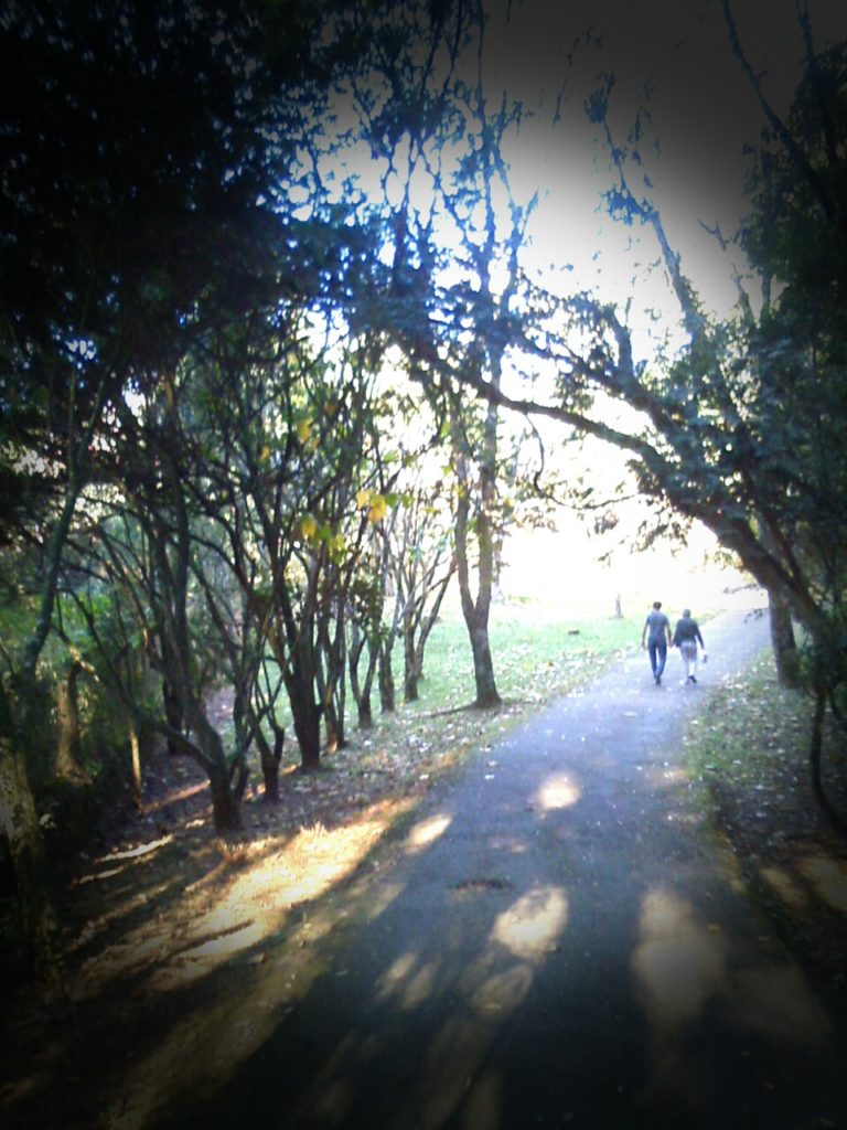 Parque NP3