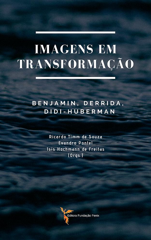 Imagens em Transformação - Ricardo Timm